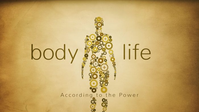 Body Life: According To The Power