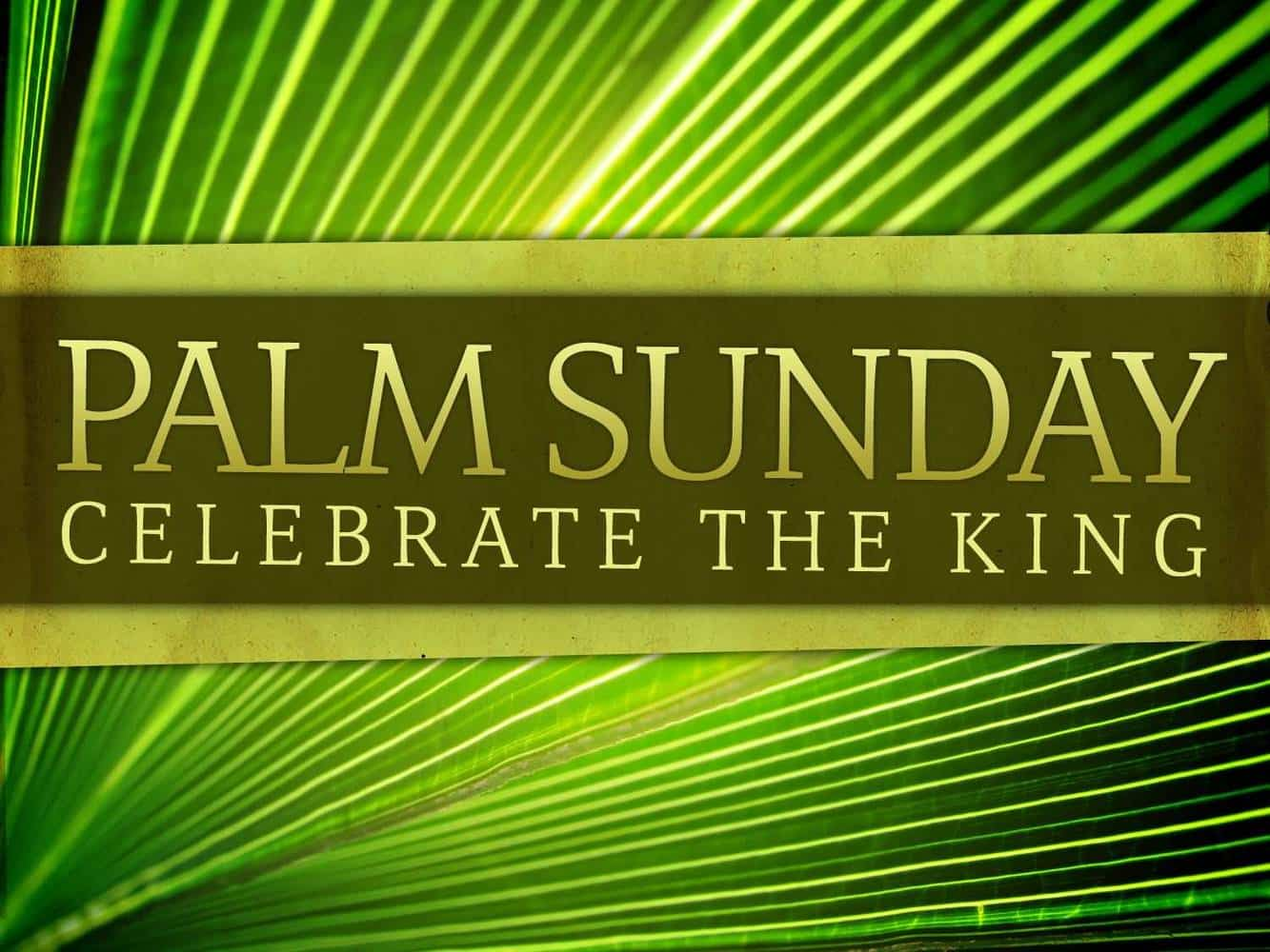 Palm Sunday: Why Did The Cheering Stop Image
